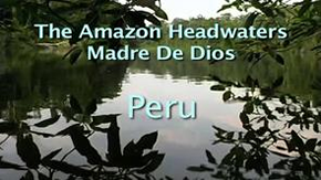 Michael Pellegatti Wild Visions's Videos on Vimeo - Headwaters of the Amazon